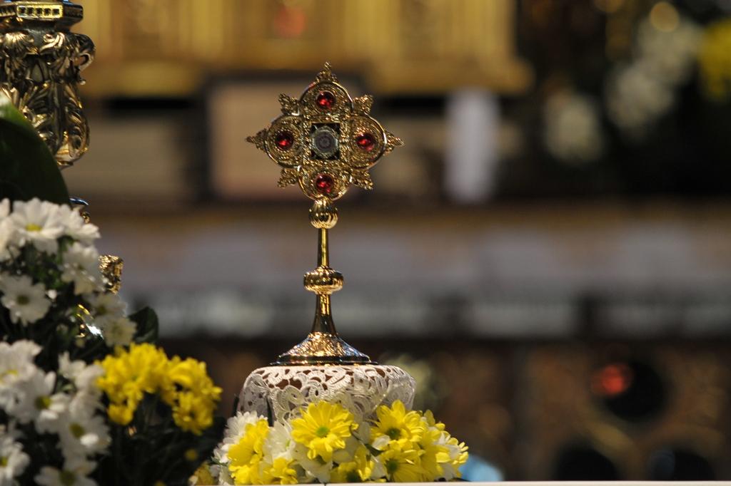 Święty Papież wśród nas